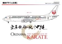 ニュース画像 1枚目:特別塗装機「空手発祥の地 沖縄」のデザイン