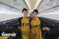 ニュース画像 1枚目:機内での客室乗務員 イメージ