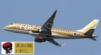 ニュース画像:フジドリームエア、岩手県とネーミングライツ契約を継続 ゴールド機で