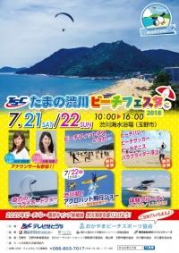 ニュース画像:ウイスキーパパ、「TSCたまの渋川ビーチフェスタ2018」で展示飛行
