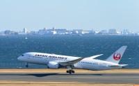 ニュース画像 1枚目:JAL 787 イメージ