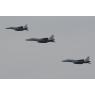 ニュース画像 2枚目:参加した空自F-15J/DJ