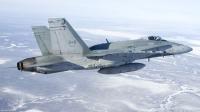 ニュース画像:カナダ空軍機の「C」で始まる独自の命名法