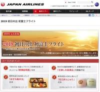 ニュース画像 1枚目:2019 初日の出 初富士フライト