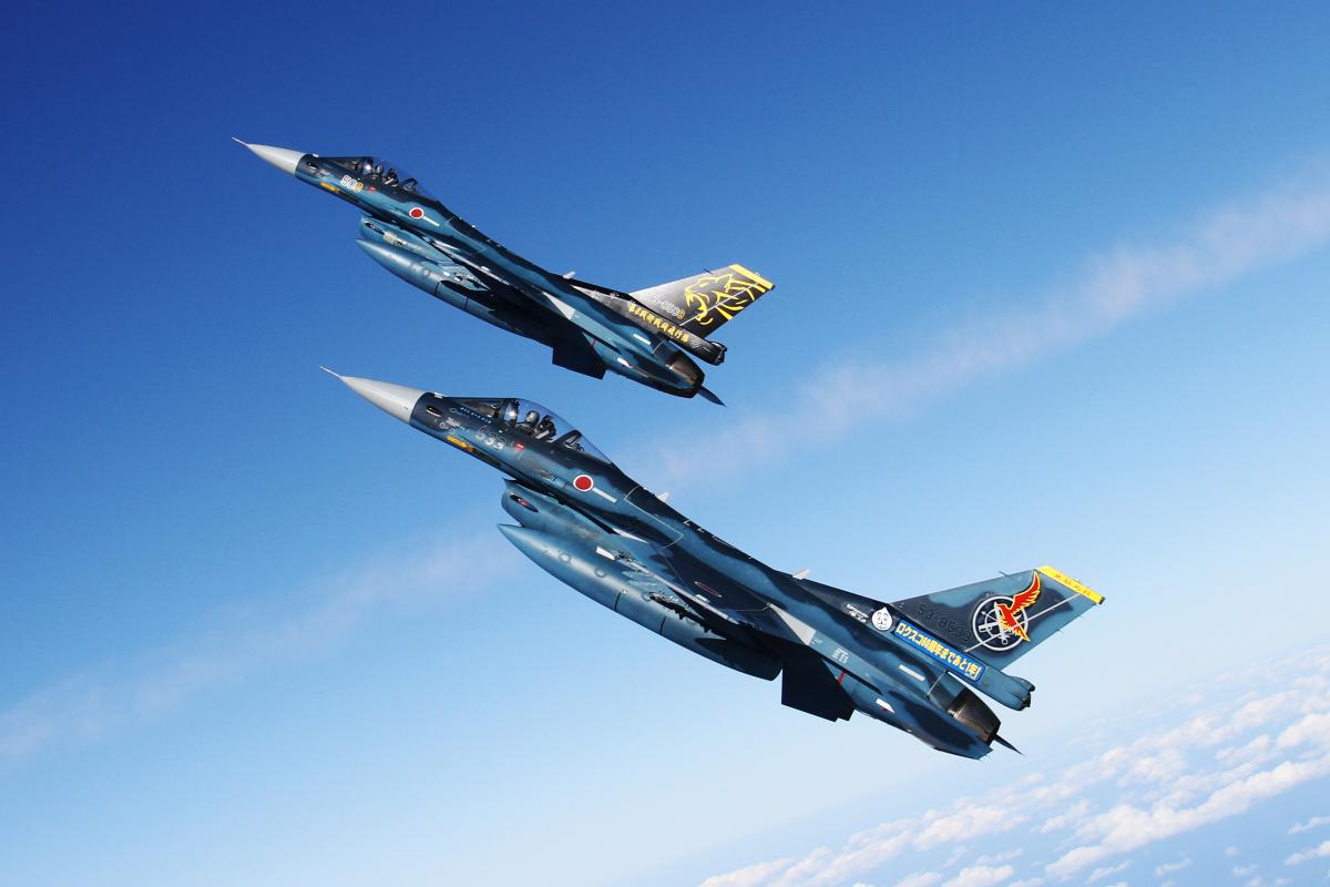 ニュース画像 1枚目:築城基地航空祭 記念塗装機