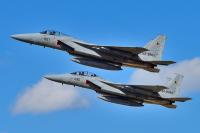 ニュース画像:新田原基地、まつりしんとみや築城基地航空祭で休日飛行 F-15など
