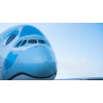 ニュース画像 3枚目:FLYING HONUの顔