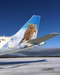ニュース画像:フロンティア航空、ローリー、ラスベガスなど4都市発着で22路線を開設