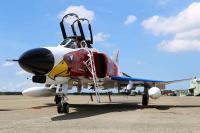 ニュース画像:百里基地、第302飛行隊部隊移動記念行事を挙行 オジロワシが飛行