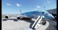 ニュース画像:A380「FLYING HONU」、片野坂社長「日本で長年人気に」