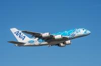 ニュース画像:ANA、エメラルドグリーン「FLYING HONU」を受領 成田到着