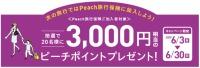 ニュース画像:ピーチ、旅行保険加入で3,000円相当のピーチポイントプレゼント