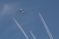 ニュース画像:ロイヤル・ヨルダン、王位継承20周年記念にヨルダン空軍と編隊飛行