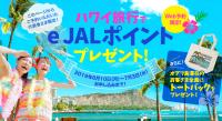 ニュース画像:JAL、ハワイ行き航空券購入でもれなく15,000e JALポイント