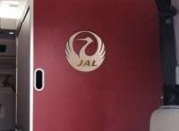 ニュース画像 1枚目:JALロゴを配した機内