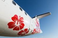 ニュース画像:JALグループ、鹿児島/奄美線の就航55周年記念イベントを実施