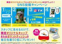 ニュース画像:所沢航空発祥記念館、トリックアートパネルを使ったSNSキャンペーン