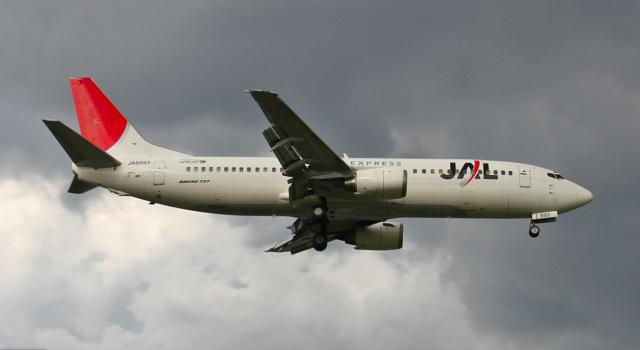 ニュース画像 1枚目:JEX時代の「JA8993」