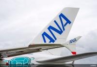 ニュース画像:ANA、2019年お盆の搭乗率は国内線85%、国際線87.8%