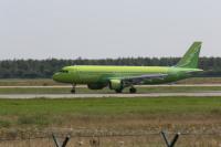 ニュース画像:S7航空、大規模森林火災の復興資金が目標額に達成 シベリアで植林開始
