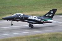 ニュース画像:イタリア空軍、第51航空団80周年とAMX配備30周年を祝う
