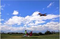 ニュース画像:松本空港写真コンクール、入賞・入選作品が決定 9月23日に表彰式