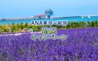 ニュース画像:ANA、10月以降の羽田/紋別線利用で買物券1,500円分プレゼント