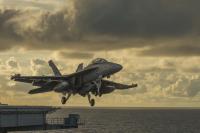 カール・ビンソン搭載のVAQ-139、ワシントン州に帰還の画像