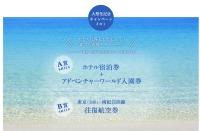 ニュース画像:JAL、羽田/南紀白浜線大型化記念で誰でも応募できるキャンペーン