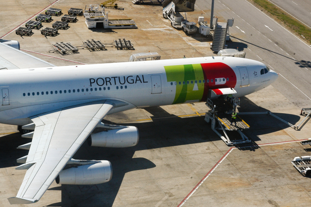 ニュース画像 1枚目:TAPポルトガル航空 A340