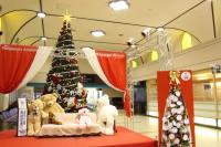 ニュース画像:長崎空港、11月15日にクリスマスツリー点灯式 12月にイベント実施