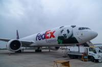 ニュース画像:フェデックス、米国から中国へ「パンダ・エクスプレス」でパンダを輸送