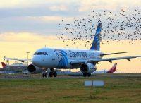 ニュース画像:エジプト航空、エアキャップと契約したA320neoをA321neoへ
