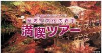 ニュース画像:JAL、岩手県の「満喫ツアー」でふるさと応援割を設定 往復1万円割引