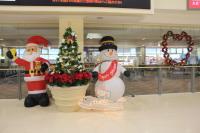ニュース画像 1枚目:函館空港 クリスマス装飾