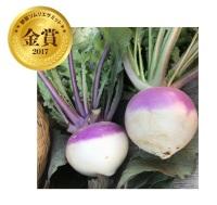 ニュース画像:ANA、野菜ソムリエサミット金賞受賞の野菜を使用したメニューを提供