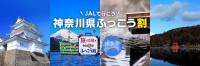 ニュース画像 1枚目:神奈川県ふっこう割