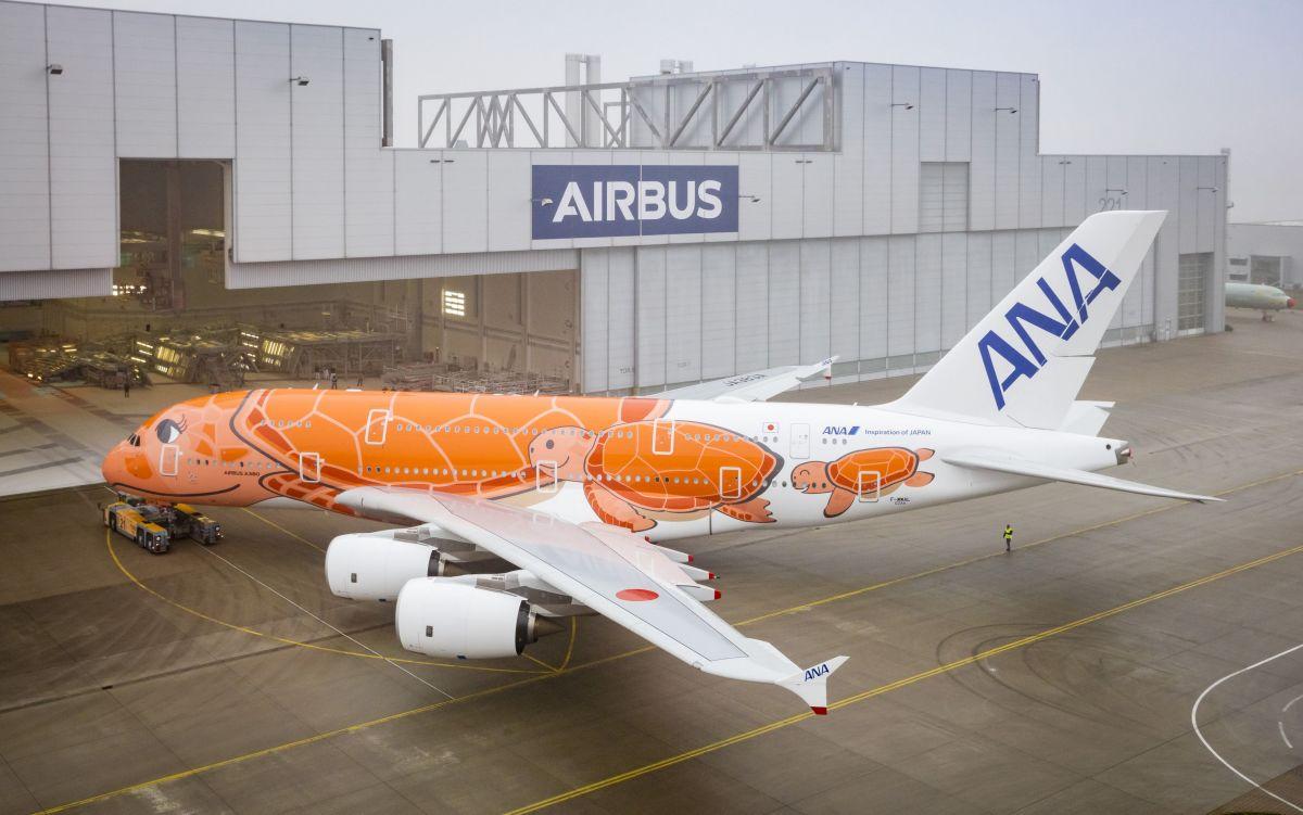 ニュース画像 6枚目:ANA「JA383A」
