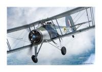 ニュース画像:イギリス海軍のソードフィッシュMk.I、3度目の初飛行