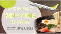 ニュース画像:ソラシドエア、福岡/那覇線の新規就航記念で搭乗モニターキャンペーン