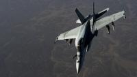 ニュース画像:VFA-115のF/A-18E、2月12日に給油口カバーを遺失