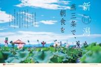 ニュース画像:JAL、3月の地域プロモーション活動 機内誌などで新潟の魅力を紹介