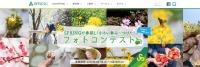 ニュース画像:春秋航空日本、春の写真投稿で航空券などが当たるフォトコンテストを開催