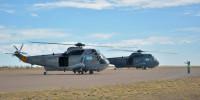 ニュース画像:アルゼンチン海軍のS-61D-4シーキング、南極から帰還