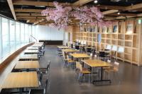 ニュース画像:函館空港、館内各所で桜の装飾を実施 5月上旬まで