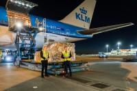 ニュース画像:KLMオランダ航空の747-400、上海から医療物資を初空輸
