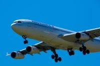 ニュース画像:エールフランス航空とトランサヴィア、送還便で27万人の帰国をサポート