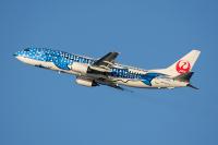 ニュース画像:JTAとRAC、4月23日から5月6日に追加減便と一部便で時間変更