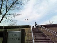 ニュース画像:成田空港近くの三里塚さくらの丘、4月25日から当面の間臨時閉鎖