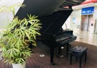 ニュース画像:南紀白浜空港、自由に演奏できるピアノを設置 廃校のピアノを再利用
